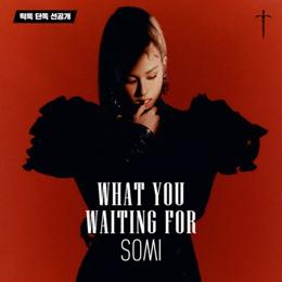 What You Waiting For Lyrics - SOMI
