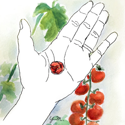 cherry tomato by Yukié Matsushita