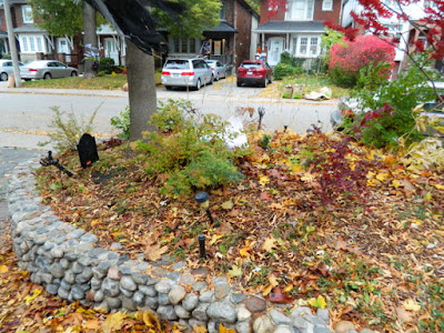 Fall Cleanup Bedford Park Front Yard Before by Paul Jung Gardening Services--a Toronto Organic Gardening Company