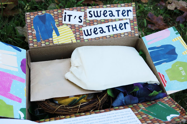 Sweater Weather Snail Mail