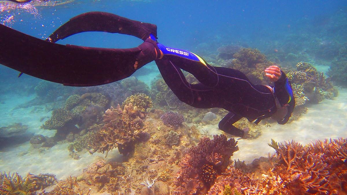 Free dive under Tenau sea's