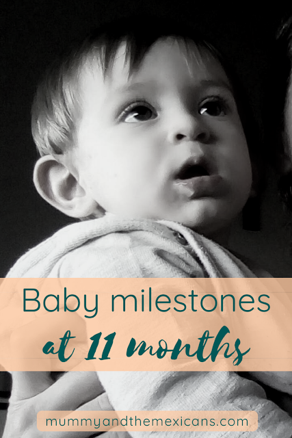 Baby Milestones At 11 Months Old
