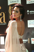 Prajna in Cream Choli transparent Saree Amazing Spicy Pics ~  Exclusive 062.JPG
