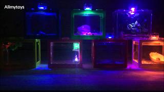 Lego Brick Shape Aquarium Tanks10
