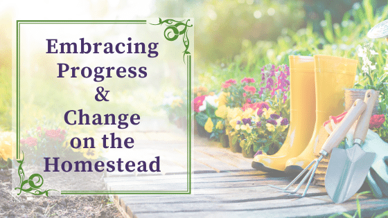 Embracing progress and change on the homestead: why it's okay to think about downsizing your homestead.
