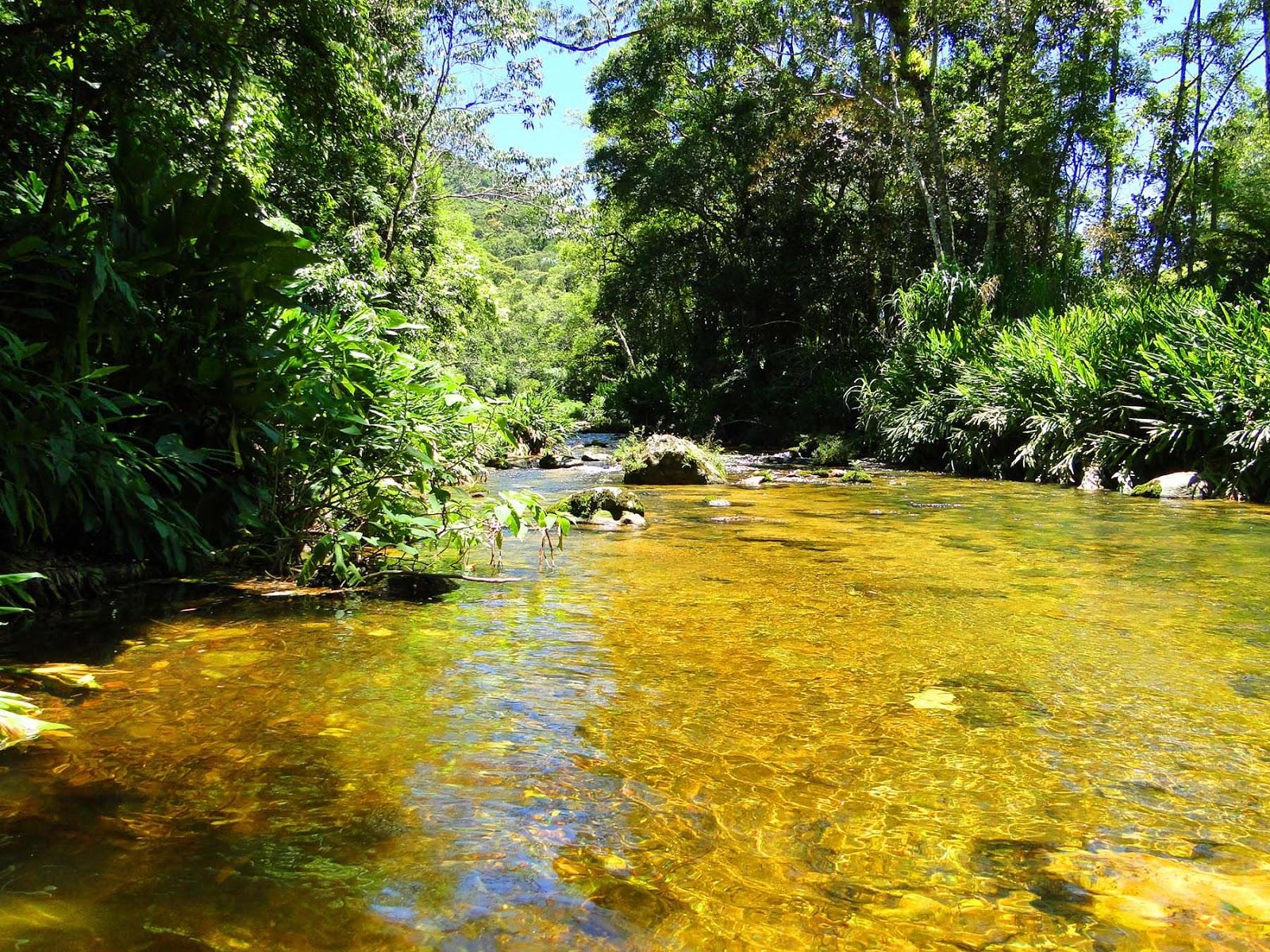 Rio Macaé em Macaé de Cima