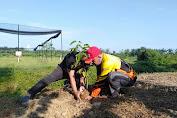 Pohon Investasi Masa Depan Kota Langsa