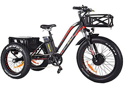 Addmotor Motan Electric Trike Adult Tricycle