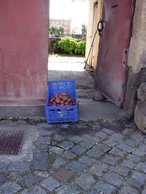 caixa de batatas no portão de uma casa