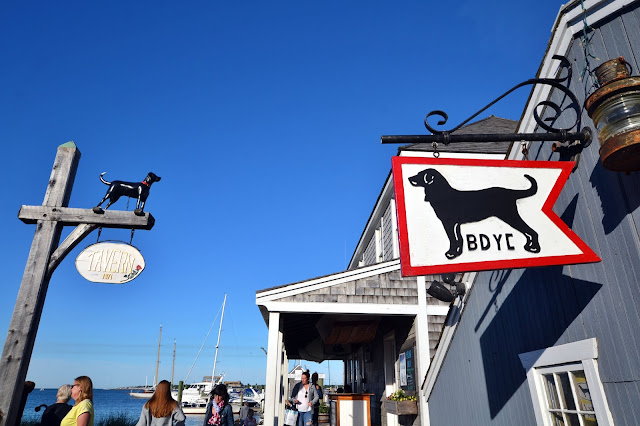 The Famous Black Dog on Martha's Vineyard (Vineyard Haven)