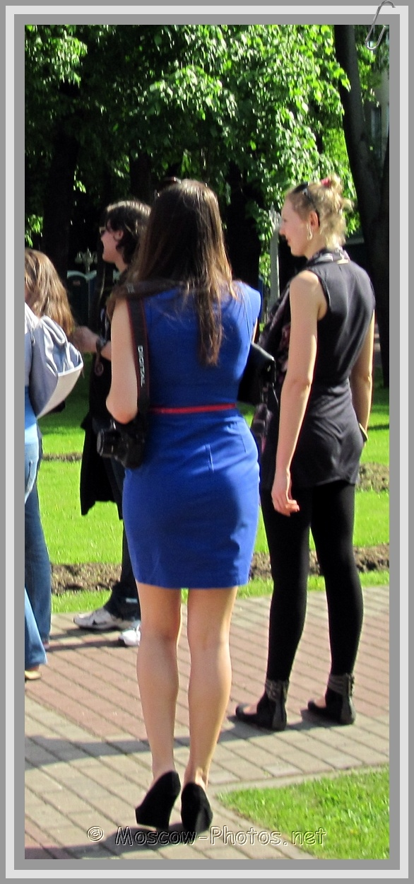 Summer Fitted Navy Dress