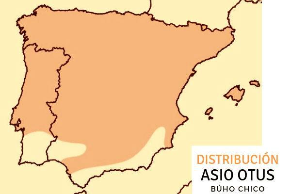 Imagen de la amplia distribución del Búho Chico, Asio otus, con una nueva rarificación en la vertiente atlántica