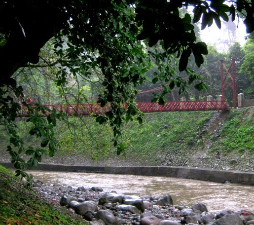 Hanging bridge at Bogor Botanical Gardens