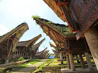 Desa Adat Pallawa Toraja Utara