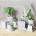 Cara Membuat Pot Bunga Minimalis dari Beton