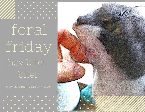 Feral Friday: Hey Biter Biter