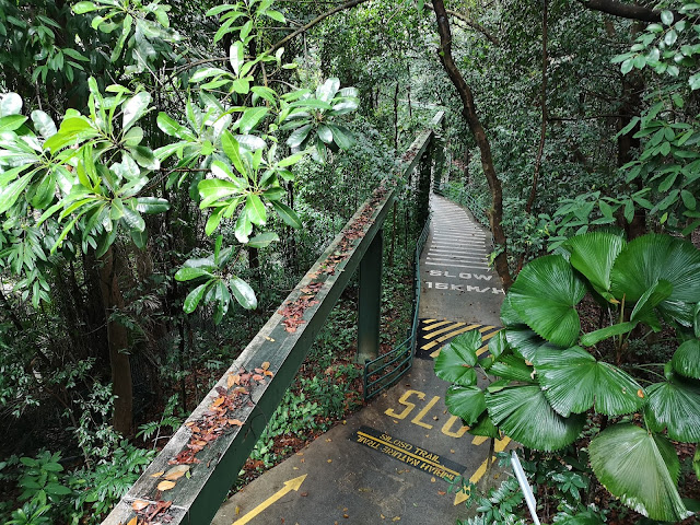 Sentosa monorail track