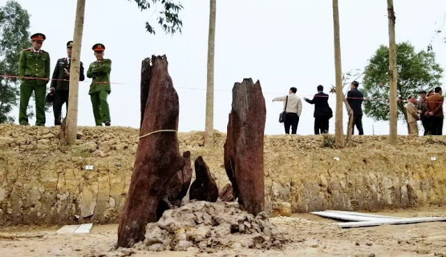 Newly found stakes prompt fresh look at Vietnam's defeat of the Mongols