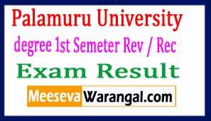 Palamuru University PU degree 1st Semeter Rev / Rec Exam Results 2017