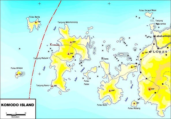 map to flores