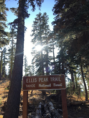 Ellis Peak trailhead sign in front of conifer forest