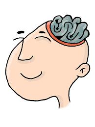 https://pixabay.com/es/cabeza-cerebro-pensar-perfil-806232/