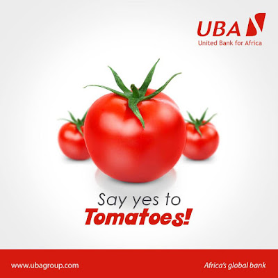 Tomato is a superstar in the fruit and veggie pantheon says the uba group
