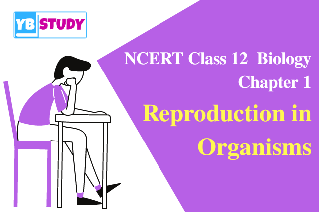 NCERT Solutions for Class 12 Biology Chapter 1 Reproduction in Organisms & Notes