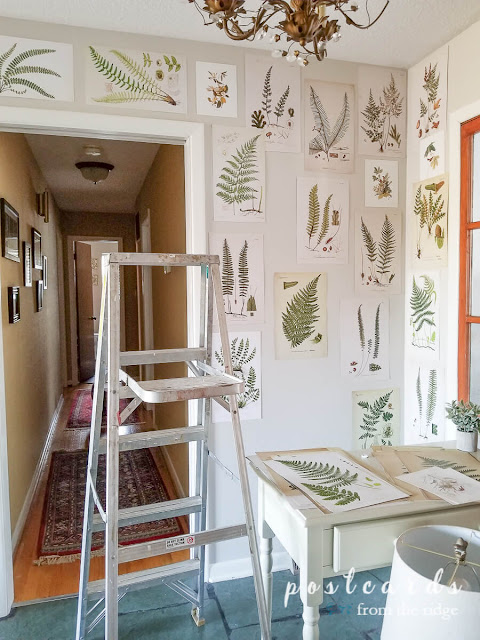 ladder and fern prints on wall