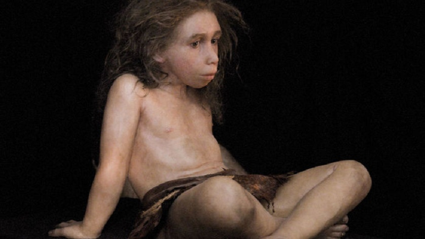 Reconstructing how Neanderthals grew, based on an El Sidrón child