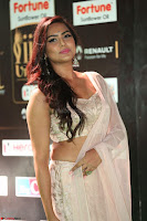 Prajna in Cream Choli transparent Saree Amazing Spicy Pics ~  Exclusive 021.JPG