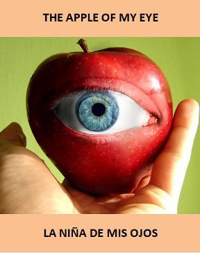 Definicion de manzana en ingles
