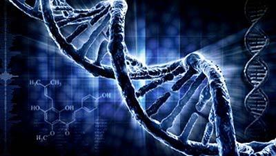 ¿De donde viene el ADN aborigen?