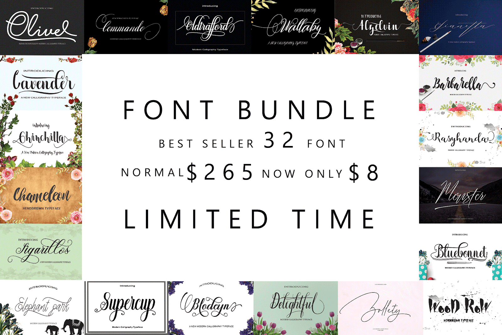 Massive Font Bundles Collections