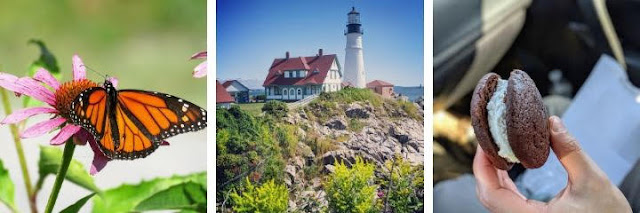 Places to Visit in Maine: Portland Head Lighthouse