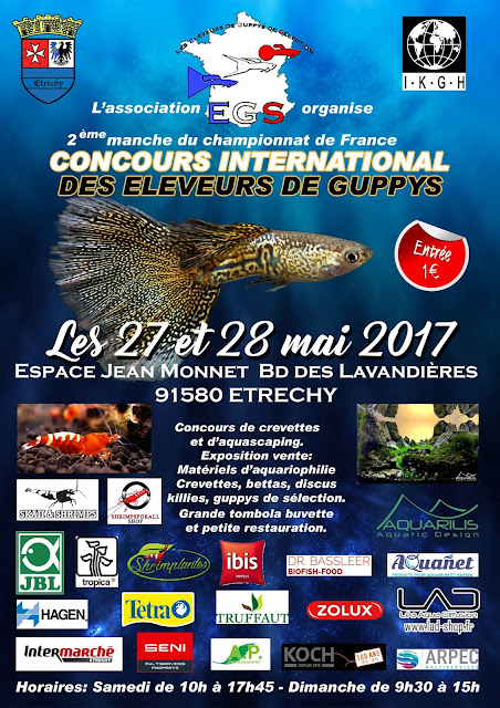 concours international de guppy en France les 27&28 mai 2017 Affiche-Etrechy2017-02
