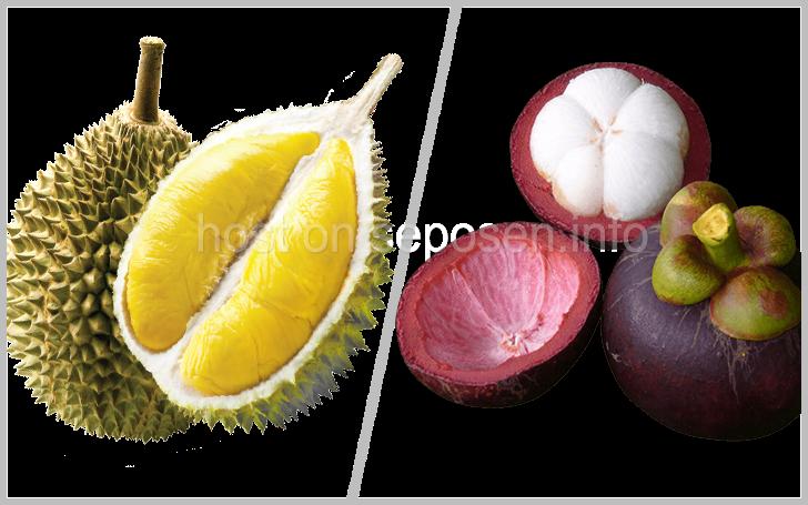 durian-vs-manggis