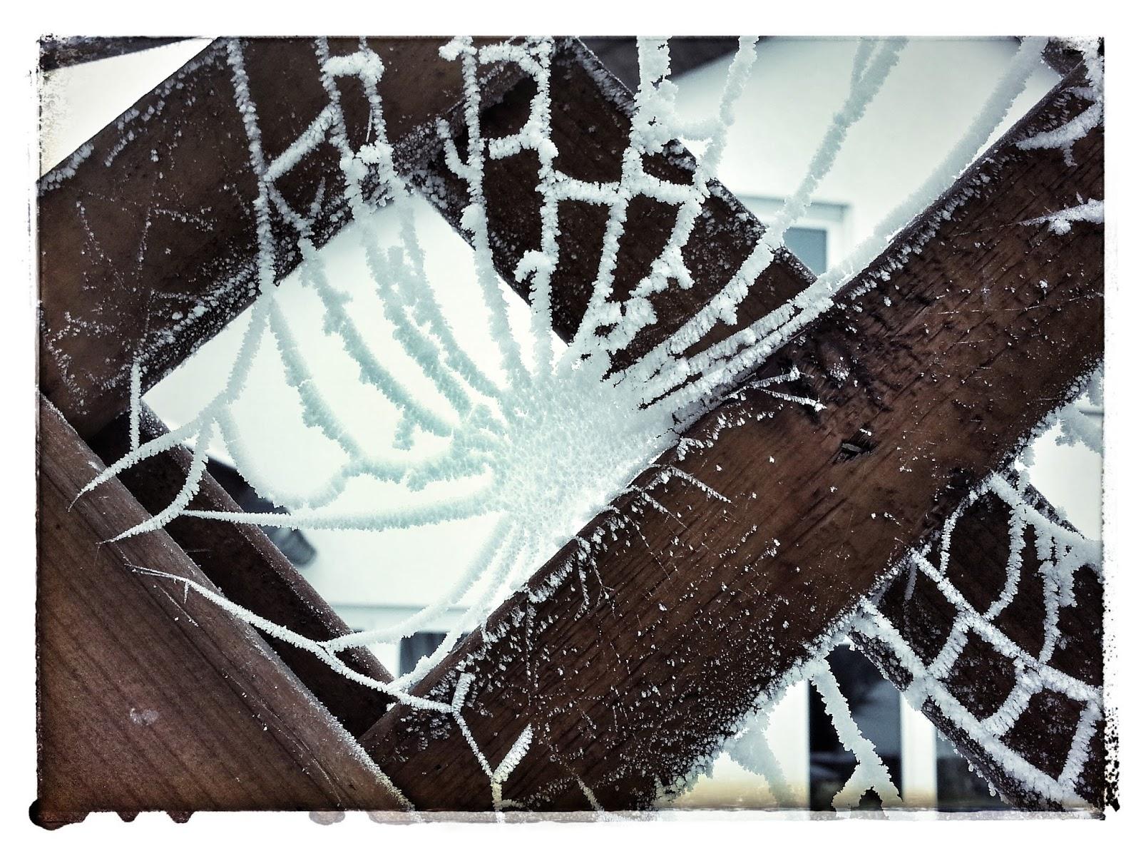 gartenspazierg nge mit ull rike v terchen frost und seine k nste. Black Bedroom Furniture Sets. Home Design Ideas