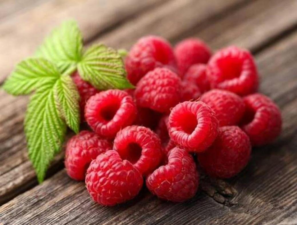 Bibit Raspberry Merah Kaya Manfaat Bengkulu