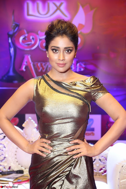 Shreya Saran in Golden Tight fit LegSplit Gown at Zee Telugu Apsara Awards 2017 06.JPG
