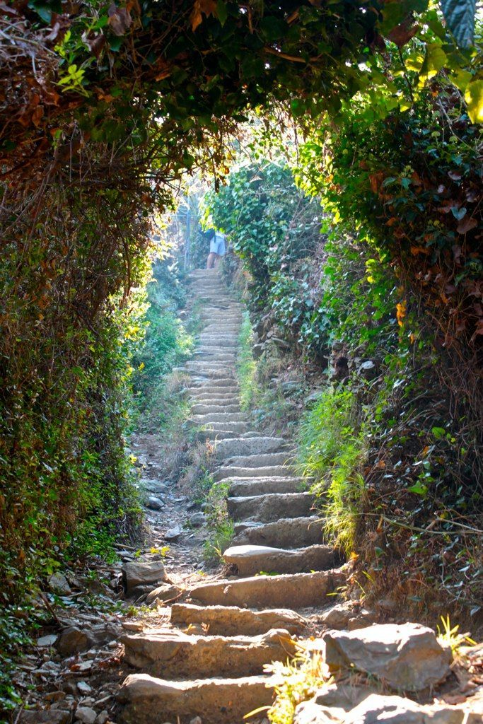 a trail in Cinque Terre, Italy - collected by linenandlavender.net - http://www.pinterest.com/linenlavender/ll-collection-no-11/