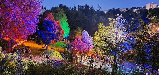 תאורה צבעונית בממלכת השלג בגן הבוטני