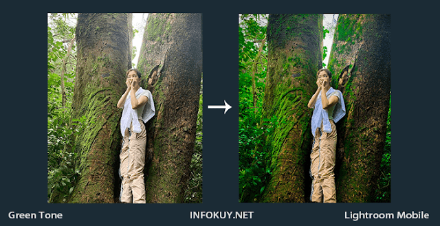 Tutorial Lightroom Green Tone