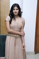 Hebah Patel in Brown Kurti and Plazzo Stuunning Pics at Santosham awards 2017 curtain raiser press meet 02.08.2017 011.JPG