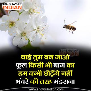 Bhanwra Par Shayari in Hindi - Love Status
