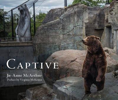 Captive the Book - Rörelse för djurrätt