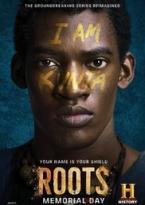 Roots (2016) Temporada 1 audio español