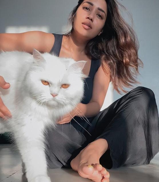 Nivetha Pethuraj (Indian Actress) Wiki, Bio, Age, Height, Family, Career, Awards, and Many More