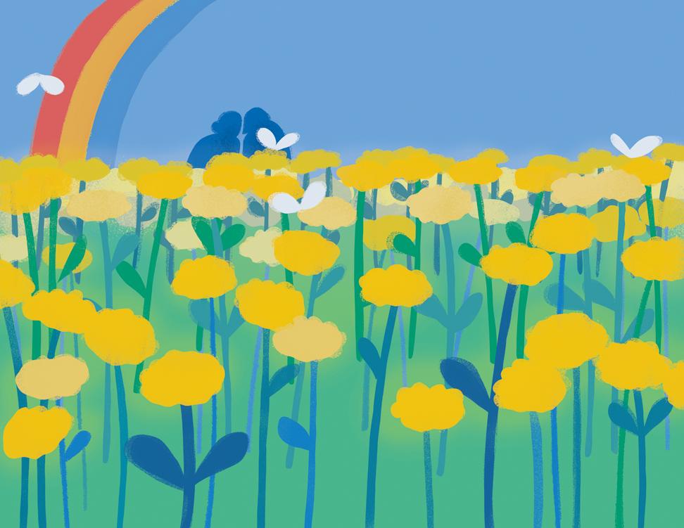 arrows preview of flower field