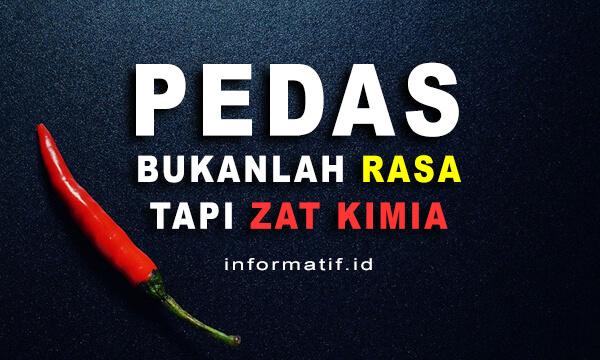 Bahaya Makanan Pedas - informatif.id